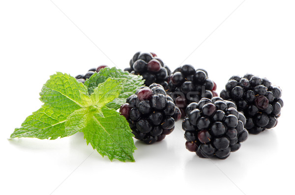 Frescos Berry BlackBerry verde menta hojas Foto stock © homydesign