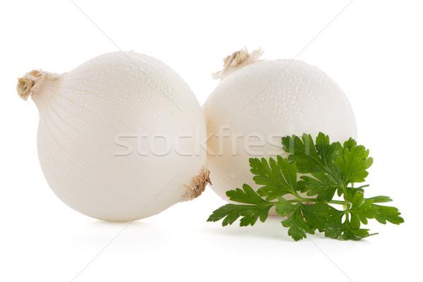 Onions Stock photo © homydesign
