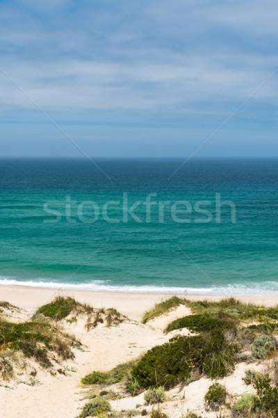 Praia Del Rei, Portugal Stock photo © homydesign