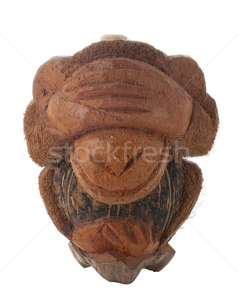 Honte singe bouteille coco forme isolé Photo stock © homydesign