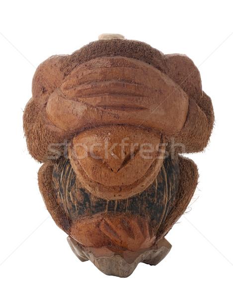 Vergogna scimmia bottiglia cocco isolato Foto d'archivio © homydesign