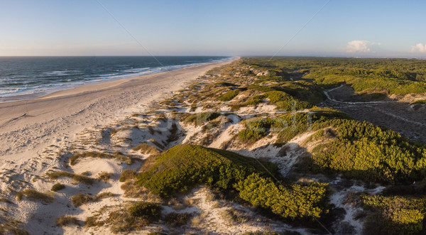 Aerial view of beach at sunset Stock photo © homydesign