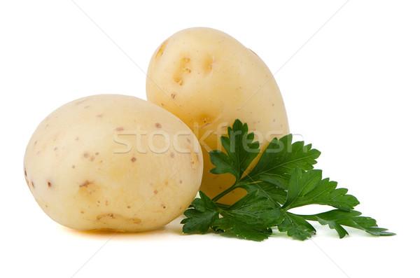 New potatoes and green parsley Stock photo © homydesign
