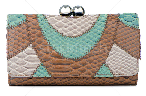 Embrague bolsa elegante marrón verde mujer Foto stock © homydesign