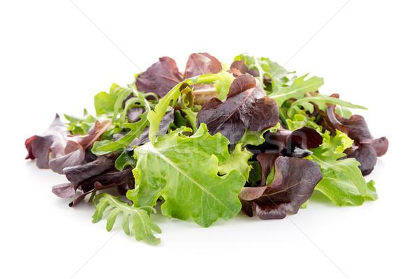 Fresh salad mix Stock photo © homydesign