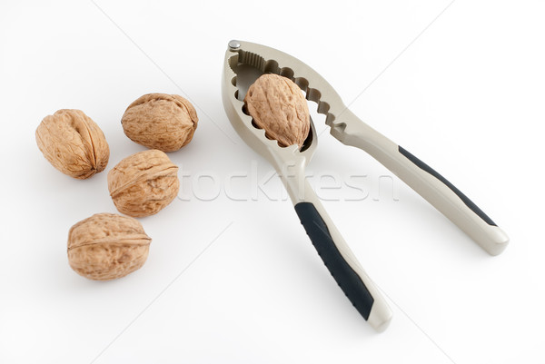 Walnuts Stock photo © homydesign