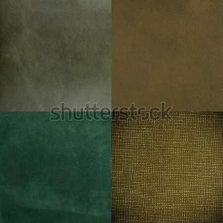 Set of green leather samples Stock photo © homydesign