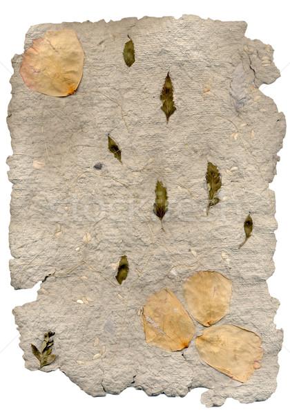 Hand made paper Stock photo © homydesign