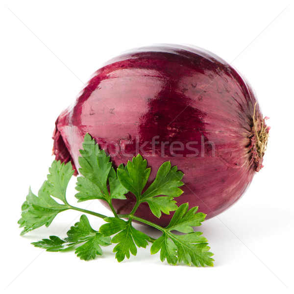 Red onion tuber and fresh parsley Stock photo © homydesign
