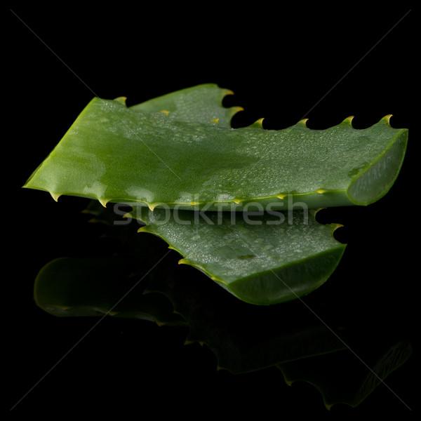 Sliced aloe leaf Stock photo © homydesign