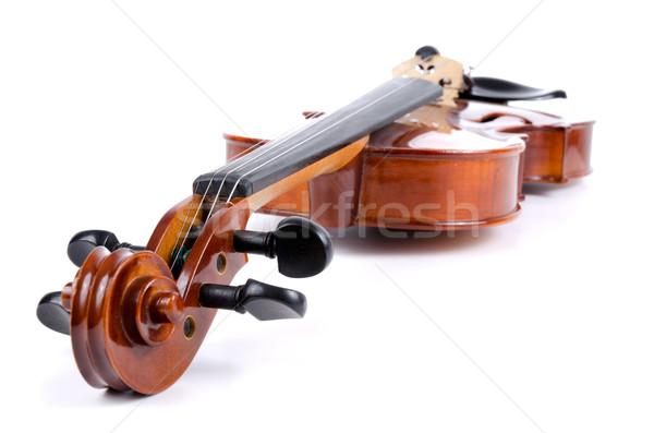 Violin Stock photo © homydesign