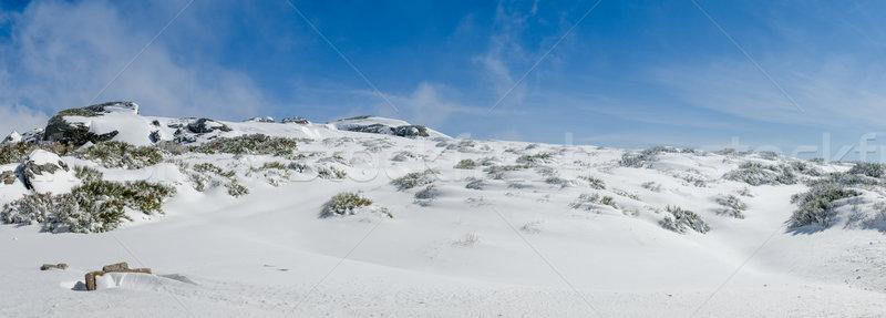 Landscape of Serra da Estrela Stock photo © homydesign