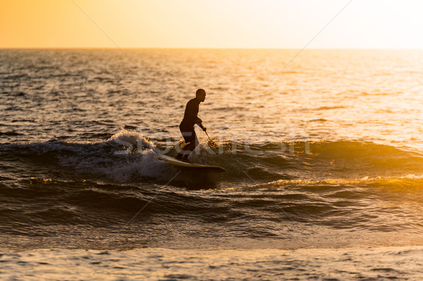 Stand up paddler silhouette at sunset Stock photo © homydesign