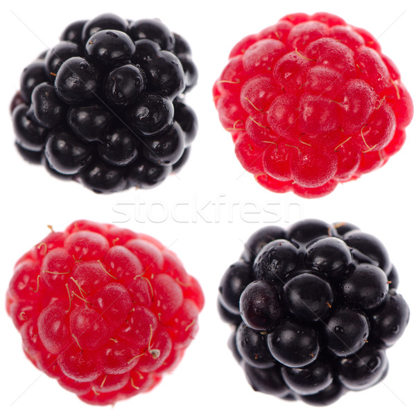 Four raspberry and blackberry Stock photo © homydesign