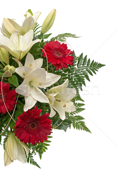 Dettaglio bouquet fiori bianco natura estate Foto d'archivio © homydesign