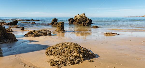 Beach of Praia da Rocha Stock photo © homydesign