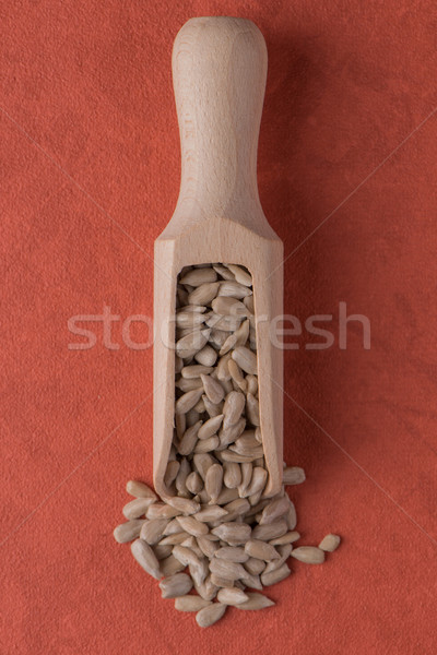 Wooden scoop with shelled sunflower seeds Stock photo © homydesign