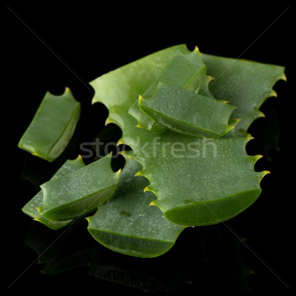 Aloés folha gotas de água isolado preto Foto stock © homydesign