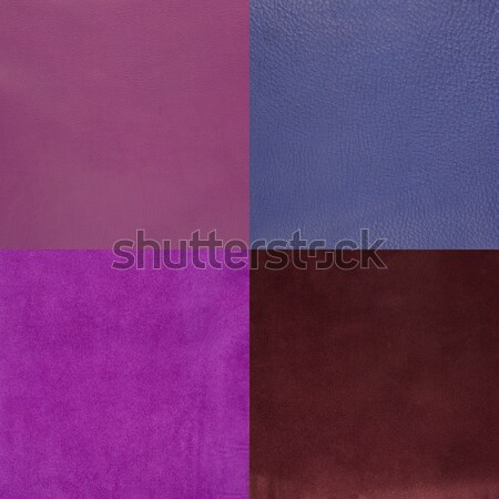 Set of purple leather samples Stock photo © homydesign