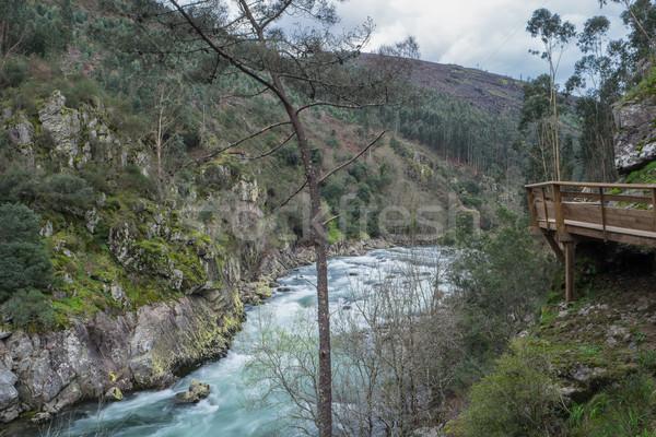 Paiva river Stock photo © homydesign