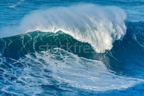 Wave breaking in Nazare Stock photo © homydesign