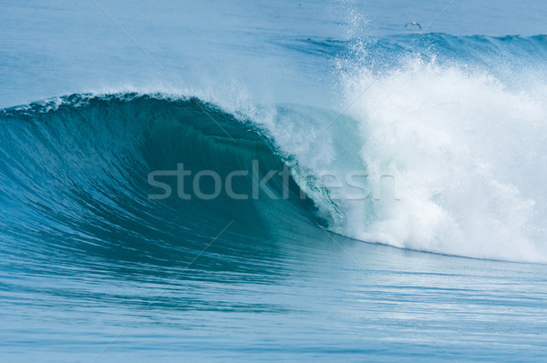 Atlantic waves in Portugal Stock photo © homydesign