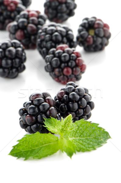 fresh berry blackberry Stock photo © homydesign