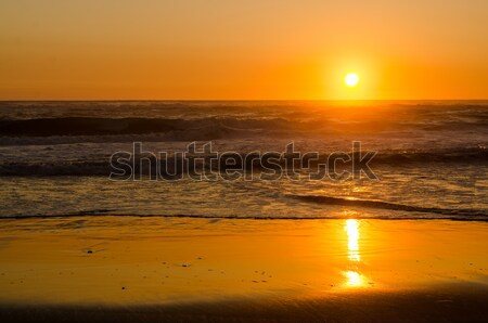 Sunset at the beach Stock photo © homydesign