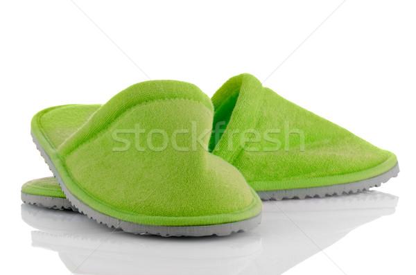 Pár zöld házi cipők fehér ház terv Stock fotó © homydesign