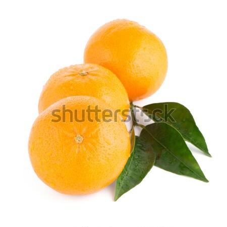 Rijp mandarijn mandarijn- geïsoleerd witte vruchten Stockfoto © homydesign