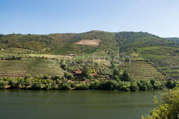 долины вино регион Португалия ЮНЕСКО Сток-фото © homydesign