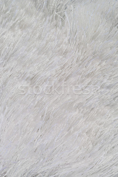 White fur Stock photo © homydesign