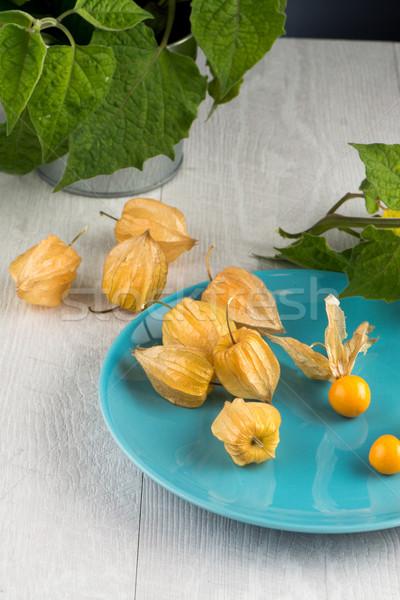 Physalis fruits Stock photo © homydesign