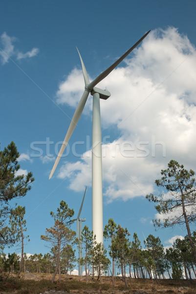 Wind turbines Stock photo © homydesign
