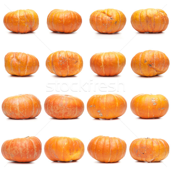 Sixteen fresh pumpkins Stock photo © homydesign