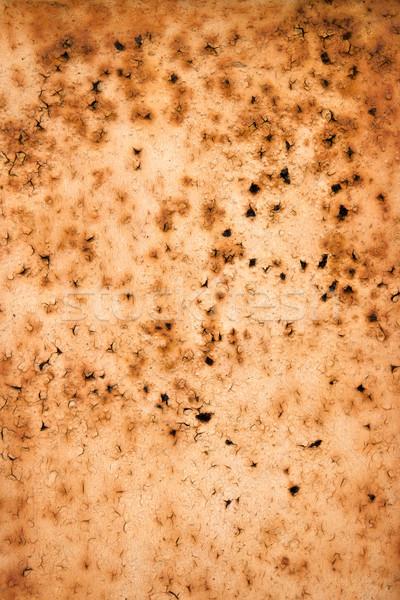 Rusty metal Stock photo © homydesign