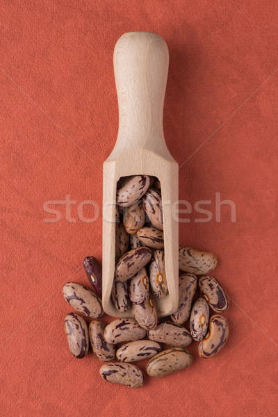 Wooden scoop with pinto beans Stock photo © homydesign