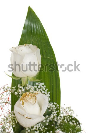 Blanco rosas ramo aislado Foto stock © homydesign