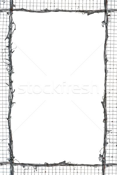 Com palha quadro isolado branco fundo Foto stock © homydesign
