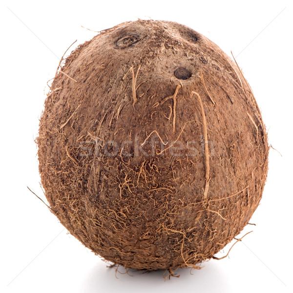 Coconut Stock photo © homydesign