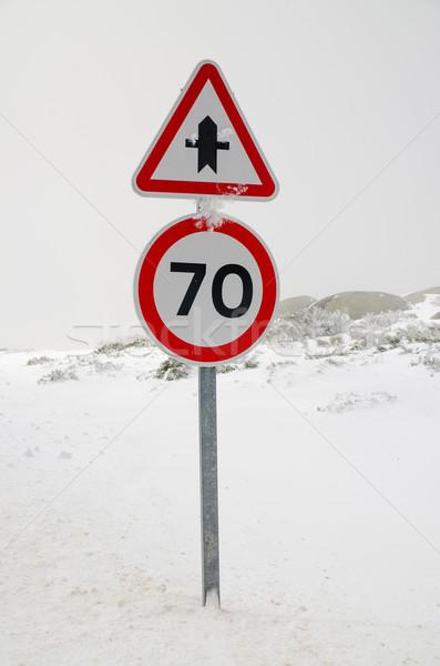 Segnaletica stradale strada inverno panorama foresta velocità Foto d'archivio © homydesign