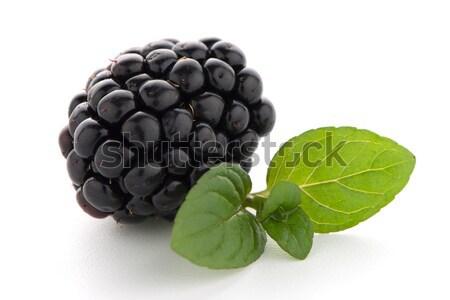 Blackberries with leaves Stock photo © homydesign