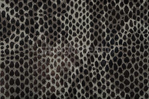 Snake skin background Stock photo © homydesign