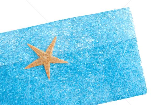 Sea star blue envelope Stock photo © homydesign