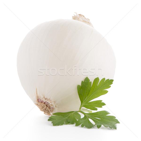 лука петрушка изолированный белый фрукты овощей Сток-фото © homydesign