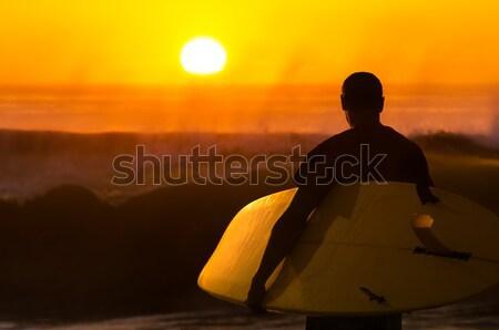 Сток-фото: Surfer · смотрят · волны · закат · Португалия · воды