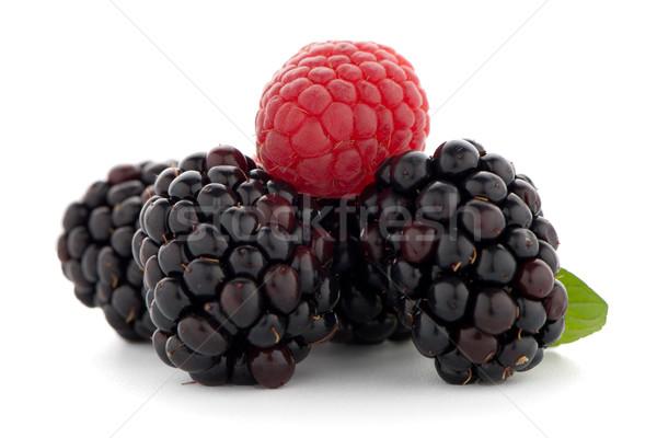 малиной BlackBerry белый продовольствие природы медицина Сток-фото © homydesign