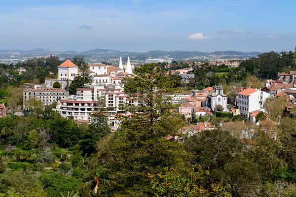 View from Quinta da Regaleira Stock photo © homydesign
