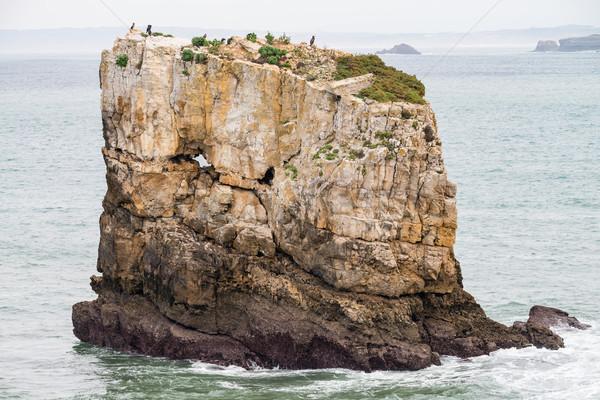 Mar rocas Portugal vista océano Foto stock © homydesign