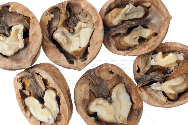 Walnuts close-up Stock photo © homydesign